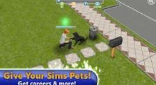 Sims5