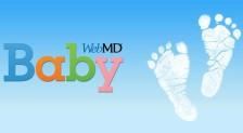 webMD Baby logo