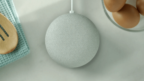 Google Home Mini Off