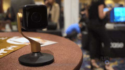 Black Hive Camera