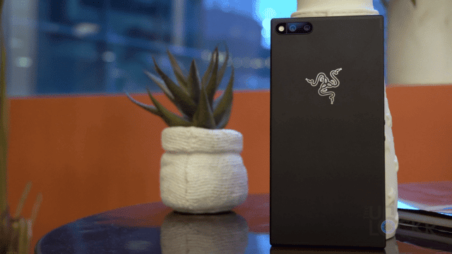 Razer Phone with Succulent