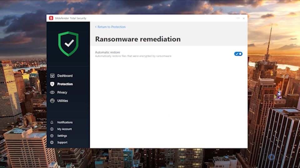 Ransomware Remediation